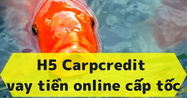 Carp Credit – web vay tiền trực tuyến được ưa chuộng