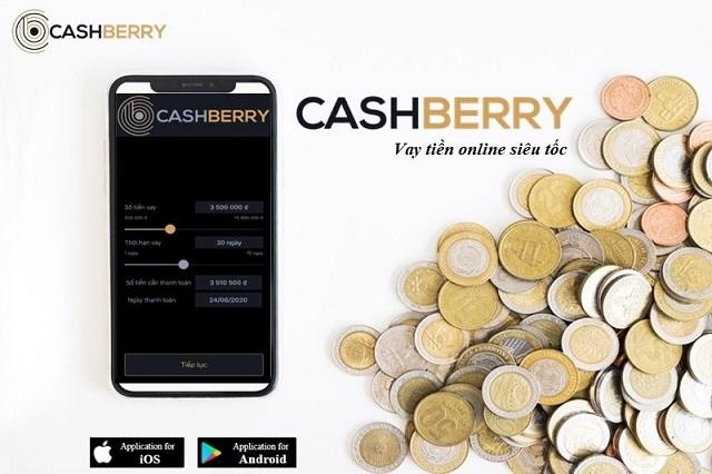 Những điều cần lưu ý khi vay tiền qua Cash Berry